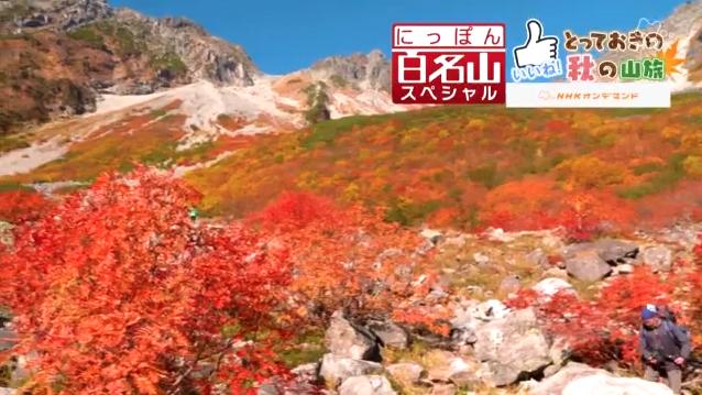 「にっぽん百名山スペシャル」 \u203b番組公式サイトより、オンデマンドにてご覧頂けます。 http//www4.nhk.or.jp/100yama/x /2018,11,05/10/25303/2409366/